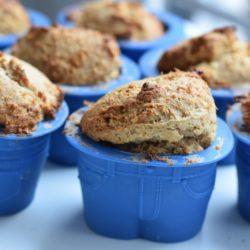 Jogurt-Kokos- Muffins